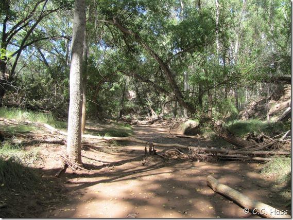Mattie Creek dried up