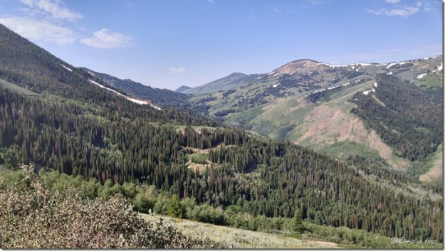 North side of the Jarbidge Mountains, looking south. July 2017.