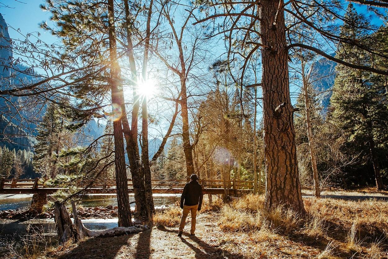 wild-native-photography-blog-yosemite_0021