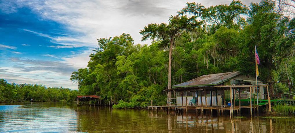 Delta Discovery Private Boat Charters