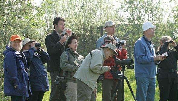 Roland van der Vliet (3e links) met de Audubon Society uit Amerika in Nederland ( © Mark Hamilton )