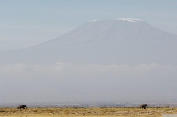 kilimanjaro_D2E6226