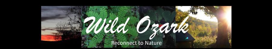 wild ozark header