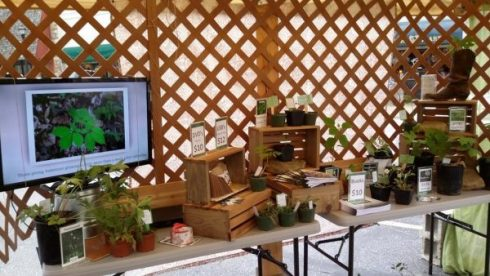 Wild Ozark's Booth setup
