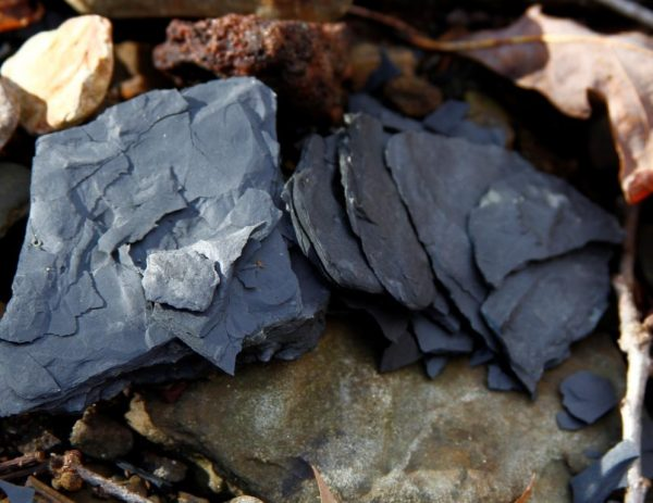 shale is a gray Ozark pigment