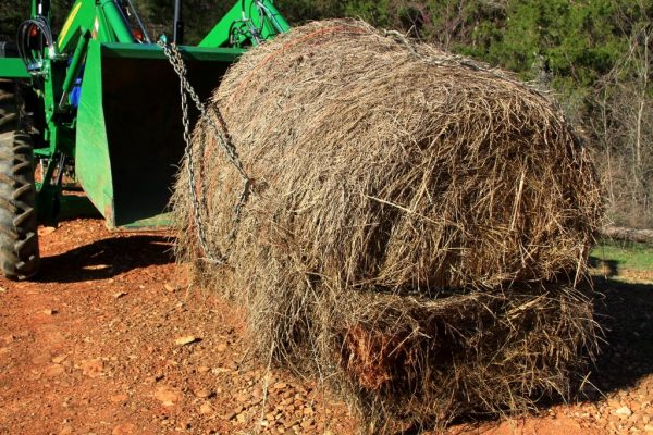 When the bucket is tilted up, the chain tightens and then the bale can be lifted.