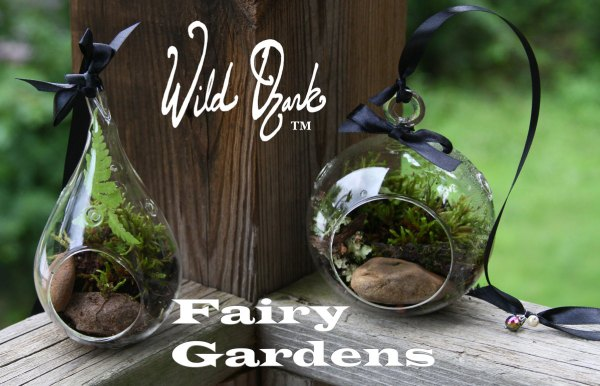 Our Fairy Gardens are available in round or teardrop globes.