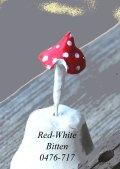 Red-Whte-Bitten-0476-717