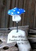 blue-white-toadstool-0479-7