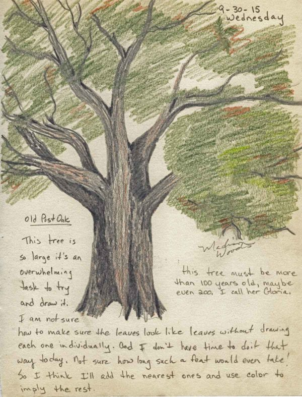 Day 10 from my nature journal series.