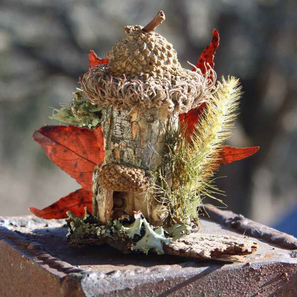 A wee little fairy house made from Wild Ozark nature farm botanicals.