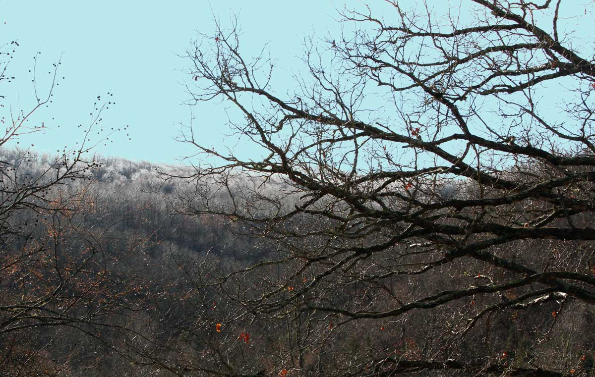 Frozen fog (hoar frost) on the distant mountaintop.