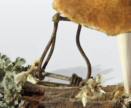 Swing detail. This swing is completely made by nature, with added flower decoration added by me.Serial number 032718-06