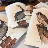 Prints of paintings by Madison Woods, who makes her own paint from Ozark soil, clay, and stone.
