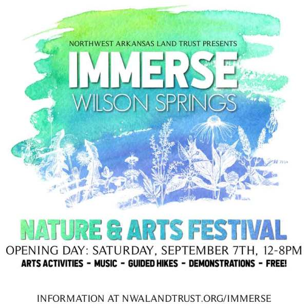 Immerse at Wilson Springs 2019, first of the events with Autumn on the way.