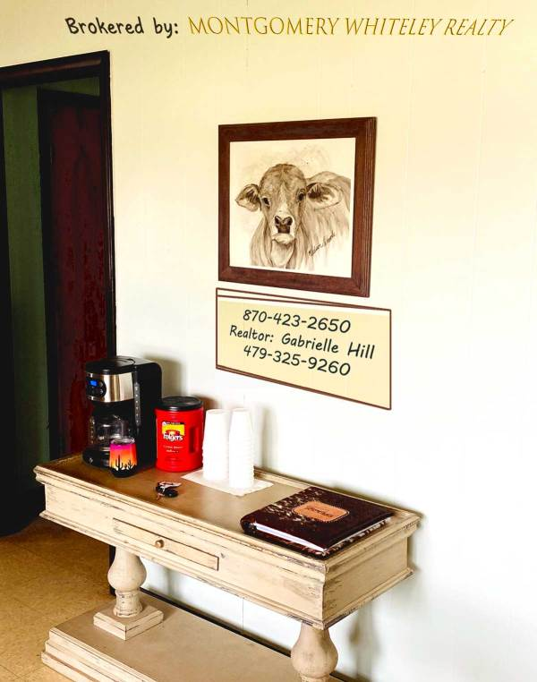 Brahman Baby original on the wall at Gabby's office in Green Forest, Arkansas.