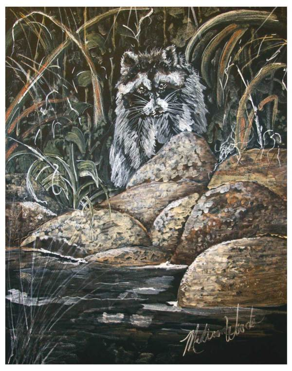 Art inspired by nature: 'Raccoon on the Rocks' in Ozark pigments by Madison Woods.