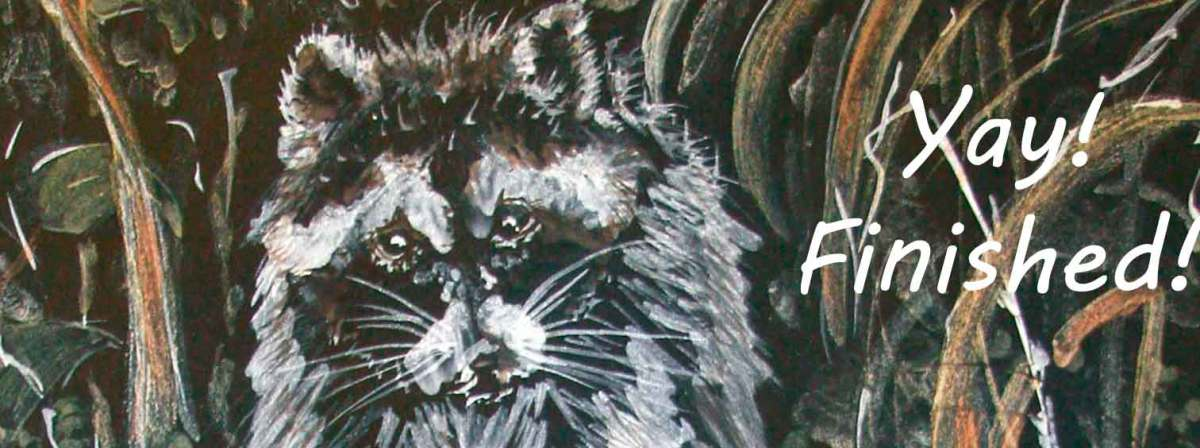 Header image for my page on painting the raccoon.