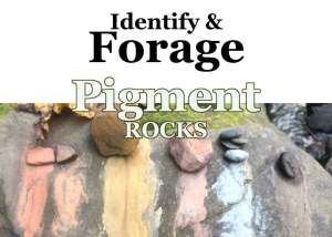 Identify & Forage Pigment Rocks, a Wild Ozark workshop.