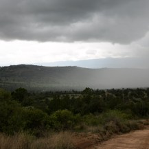 Lolldaiga Hills Ranch, Kenya.