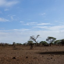 North-east Laikipia.
