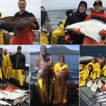 5-21-2016 Successful Alaska Resident and Non resident anglers