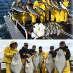 6-23-2016 Fabulous fishing frenzy for kings and halibut