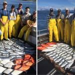 7-12-2016 Fabulous fishing frenzy in Sitka Alaska