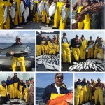 8-1-2016 The variety of fish are still being caught daily