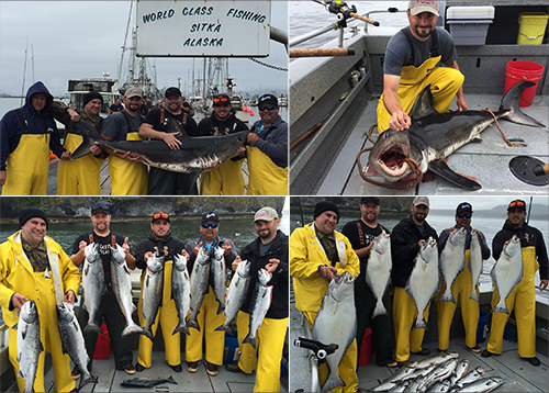 6 25 2015 A Salmon Shark was the special Catch of the Day