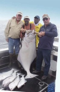 Excellent Sitka Halibut