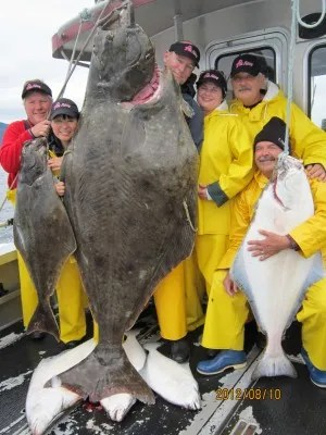 Giant 325 Pound Halibut Caught by the Pink Fishing Crew