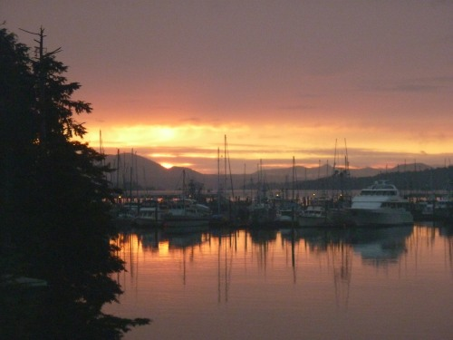 Sunset In Eliason Harbor