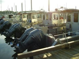 Alaska Premier Charters, Inc. Boats Docked