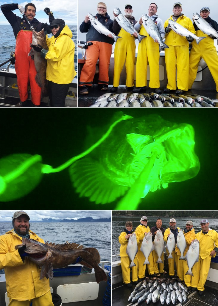 """A Lingcod caught in the """"limelight"""" at 200 feet!"""