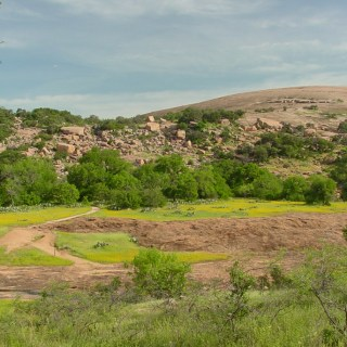 Wildflowers and the pink granite domes of Enchanted Rock. Copyright © Shannon D. Blackburn.