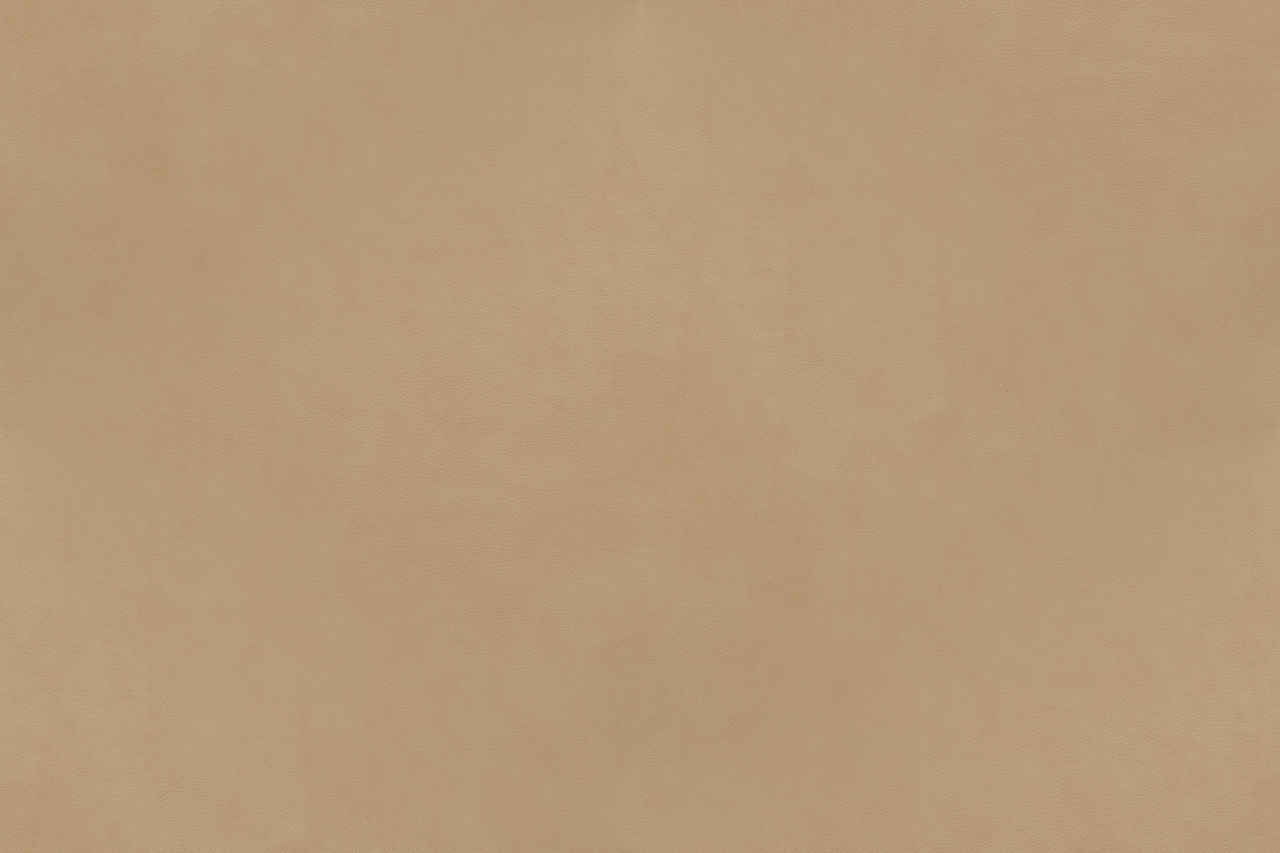 Leather Texture Campo Series Beige