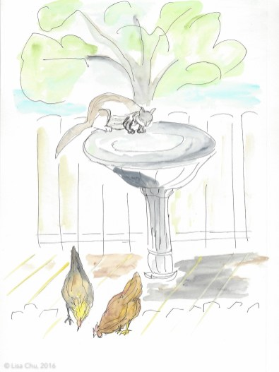 Cat birdbath chickens
