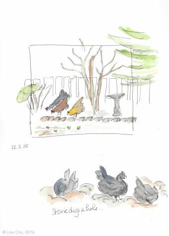 Hourly chicken comic 12.2.15 1