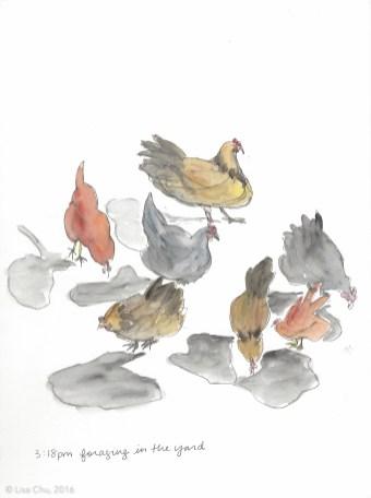 Hourly chicken comic 3.18 pm 12.2.15
