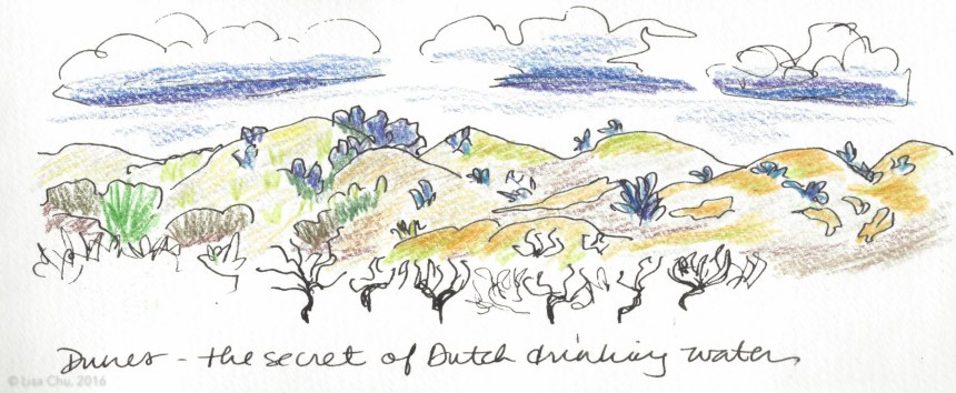Sketch of the sand dunes on my bike ride through the tulip fields - said to be the secret to the purity of Dutch drinking water