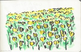 Tulips - yellow