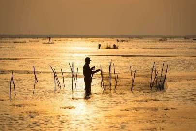 fisherman set nets
