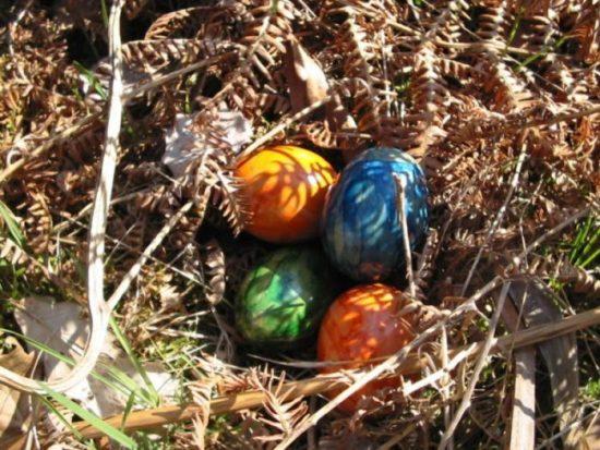 Kükenfest Holzminden , der perfekte Start in den Frühling