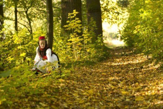 Schwaelmer-Land_2010-10-23_7206_online