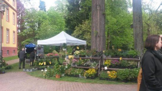 Frühlingsmarkt in Schlitz