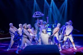 Atemberaubend artistisch - der Circus Flic Flac in Kassel!