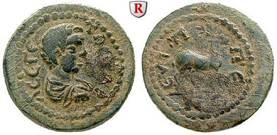 https://i1.wp.com/www.wildwinds.com/coins/ric/geta/_euippe_Ritter_32304.jpg
