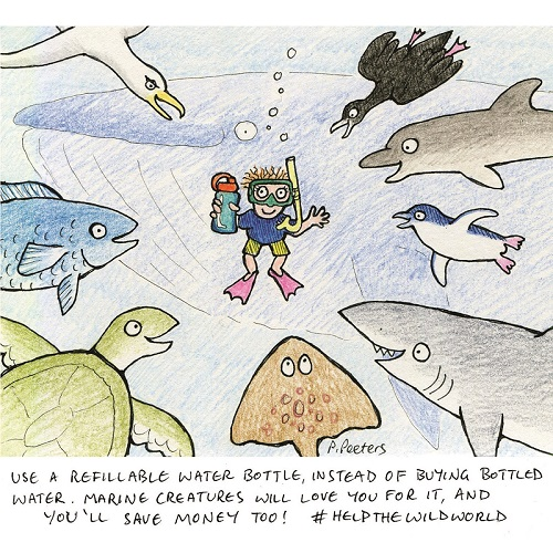 Sea creatures love reusable bottles