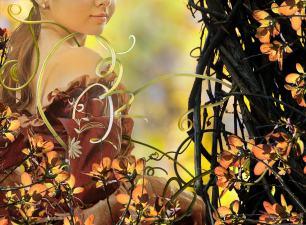 Photomontage II